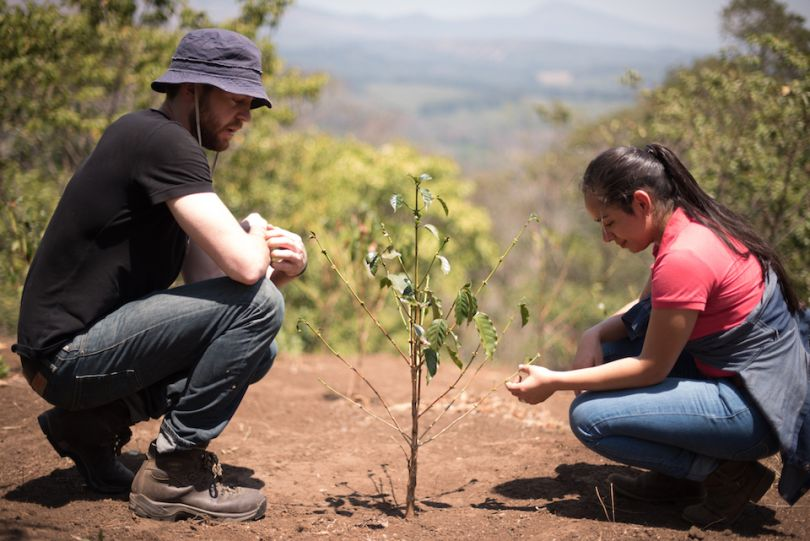 scott tupper ivonne herrera onda origins on guatemalan coffee farm onda origins